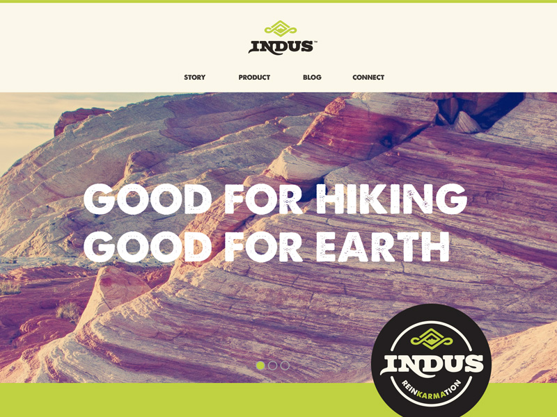 indus website design